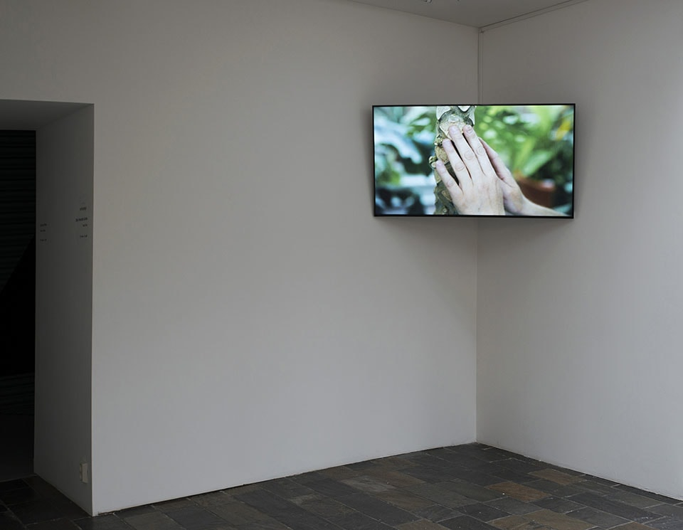 (写真について)2017年の展覧会「Touch Tours」Hordaland Kunstsenter(ベルゲン)での展示風景。Photo: Bjørn Mortensen