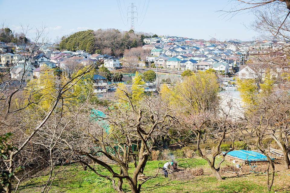 (写真について)住宅地の真ん中に浮かび上がるかのよう。こんもりとした丘の上にある〈クラフト工房 LaMano〉。