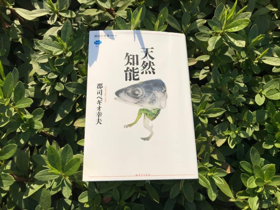(写真について)郡司ペギオ幸夫『天然知能』(講談社選書メチエ、2019年)