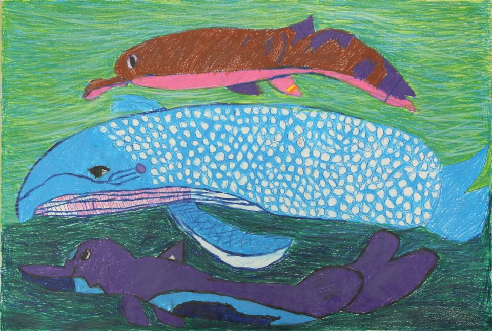 (写真について)「海の生き物」シリーズ/紙・ダーマトグラフ/940×640mm/2019年