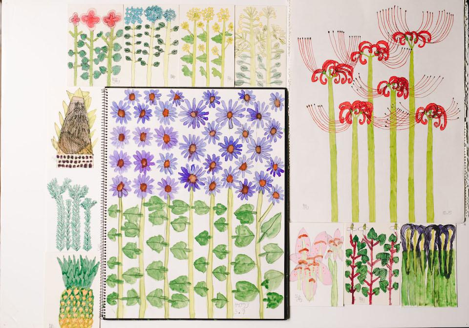 (写真について)植物の絵いろいろ。