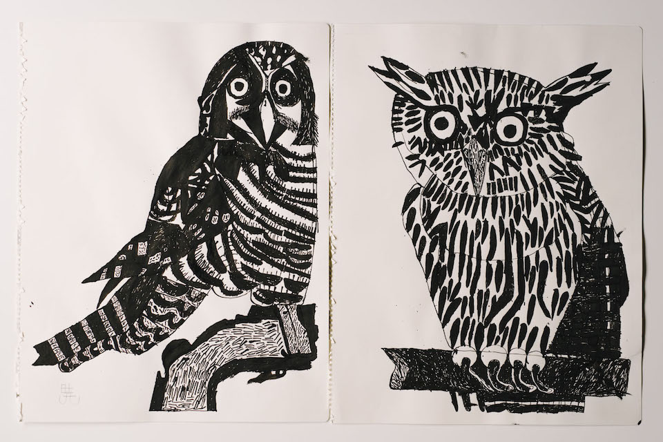 (About the photo)Owls