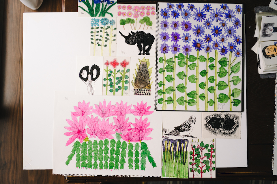 (About the photo)Plants, animals