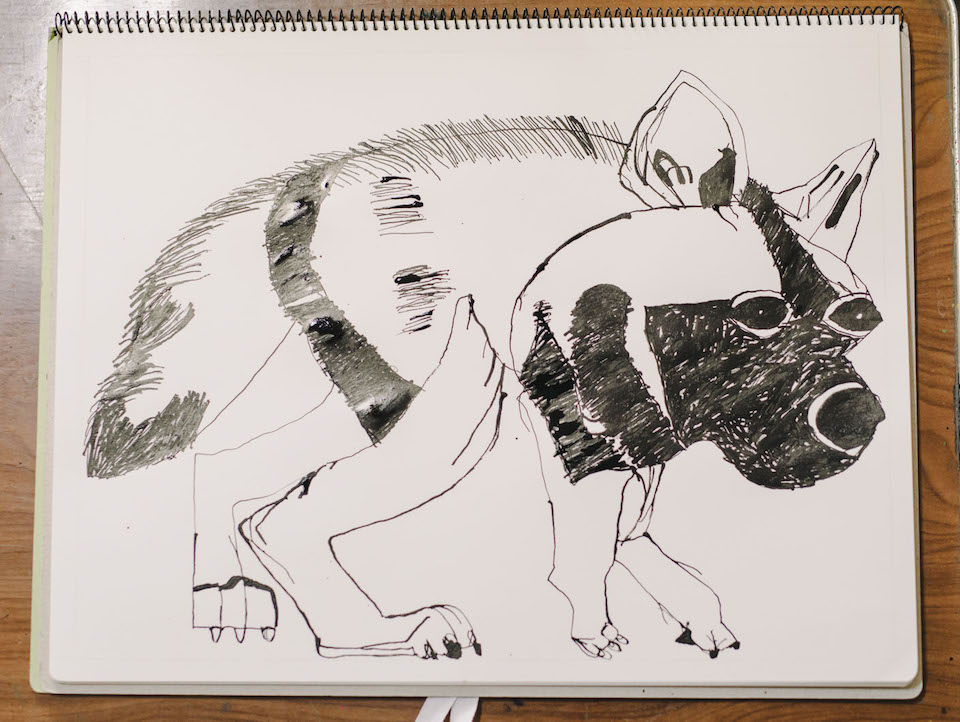 """(About the photo)Tanaka decides the subject matter for Himeno's drawings.  """"I often choose the subject matter from animal picture books these days. I try to choose an animal which can become interesting when Sato-chan draws."""""""