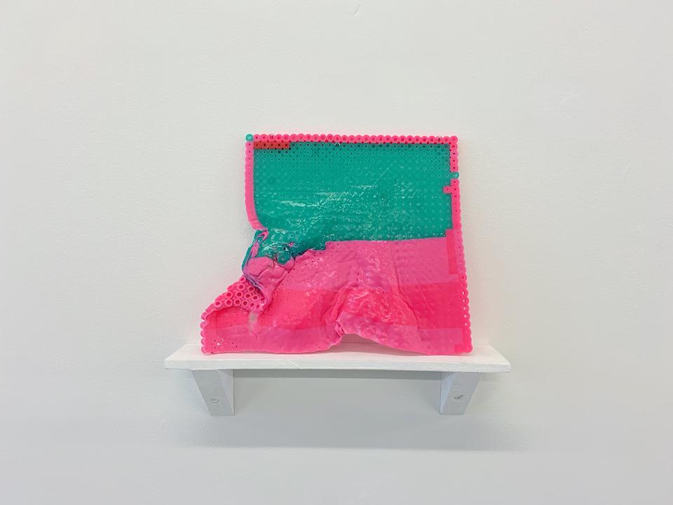 (写真について)土谷紘加 「COLONY(カラニー) 展示風景」2017
