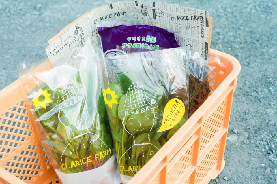 (写真について)クラリスファームの野菜袋にイラストが使用されていた。
