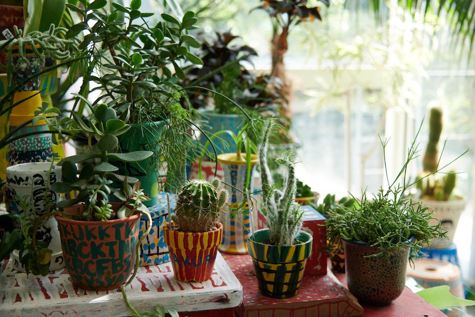 (写真について)「S-Plants」では、植物や利用者がペイントした植木鉢も販売される(2020年4月以降、新型コロナウィルスの感染拡大防止のため、当面の間休業中)。