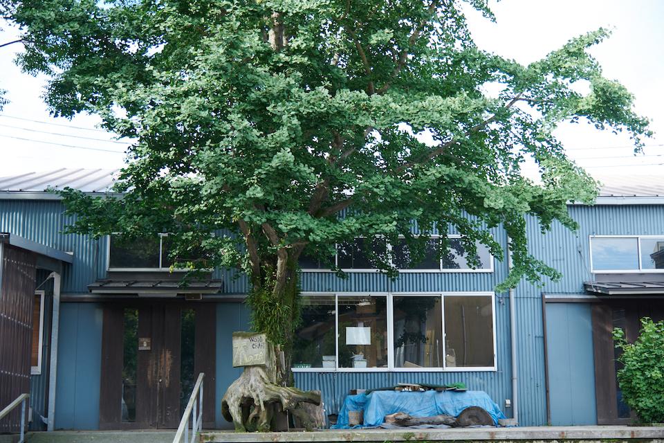 (写真について)現在、13~15名が所属していて、職員3人が担当する「木の工房」。