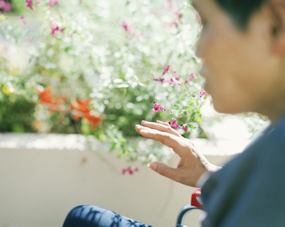 齋藤陽道「花に触れて見る」2020年撮影